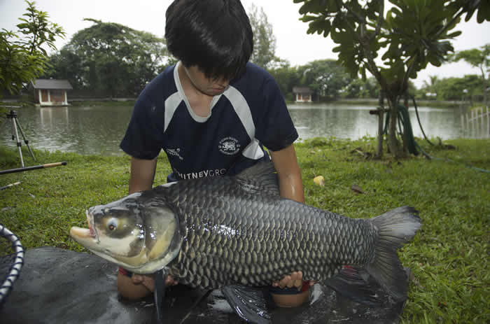 Dreamlake_Fishing_Thailand_0.320