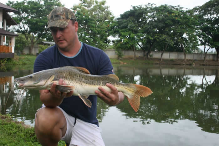 Dreamlake_Fishing_Thailand_0.335