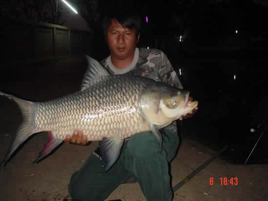 Dreamlake_Fishing_Thailand_0.349