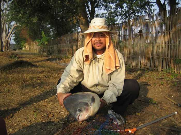 Dreamlake_Fishing_Thailand_picture-0060
