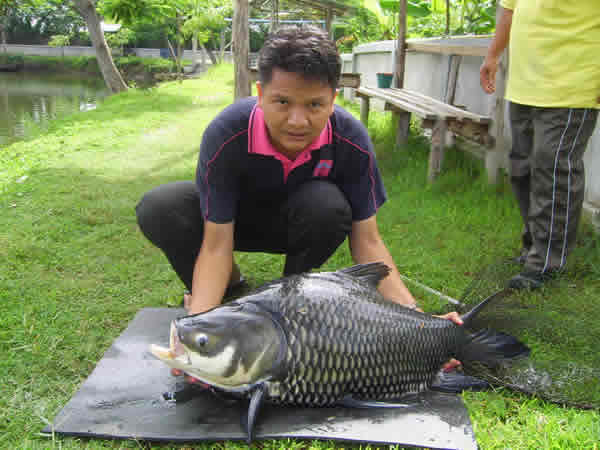 Dreamlake_Fishing_Thailand_sv100528