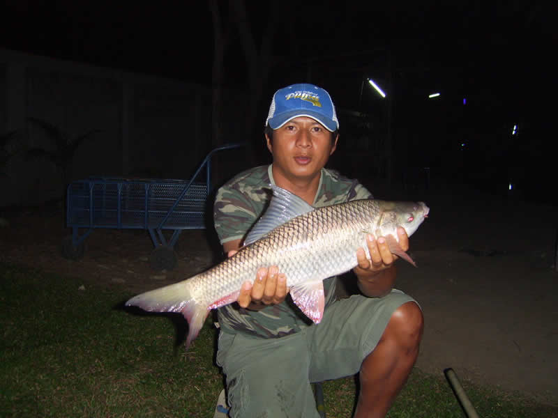 Dreamlake_Fishing_Thailand_sv100737