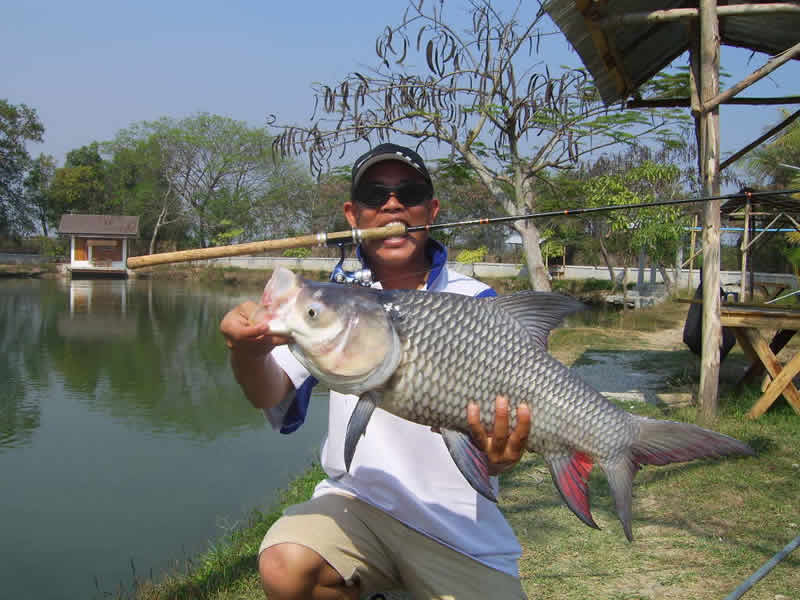 Dreamlake_Fishing_Thailand_sv100753