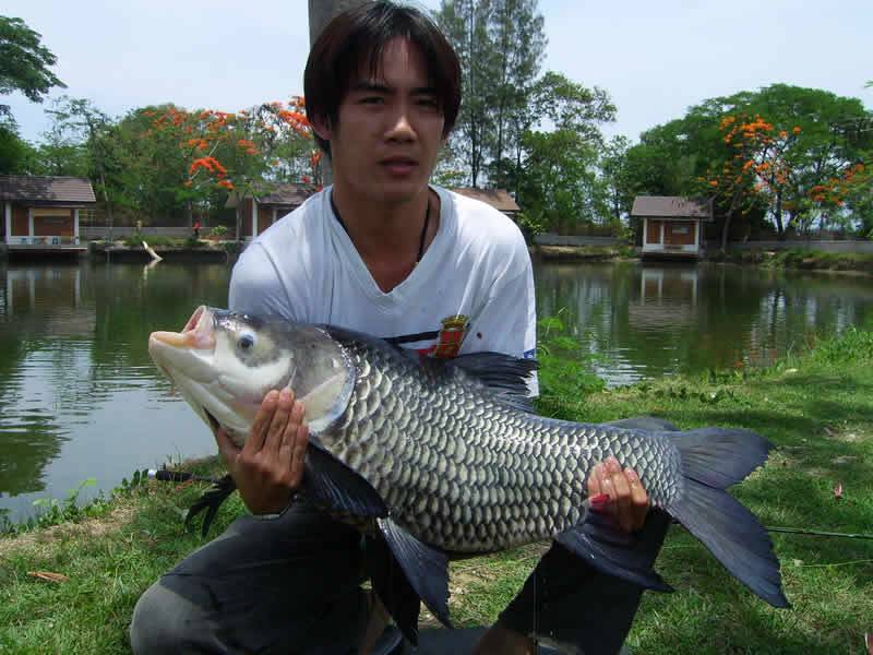 Dreamlake_Fishing_Thailand_sv100805
