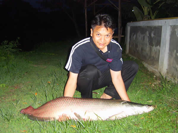 Dreamlake_Fishing_Thailand_sv100815