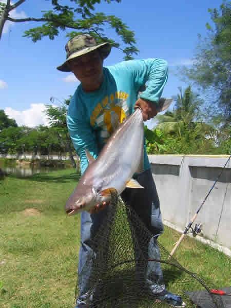 Dreamlake_Fishing_Thailand_sv101869