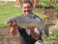 Dreamlake_Fishing_Thailand_0.490
