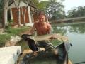 Dreamlake_Fishing_Thailand_2006_0916thailand0060