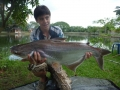 Dreamlake_Fishing_Thailand_P1010073
