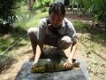 Dreamlake_Fishing_Thailand_sv101804