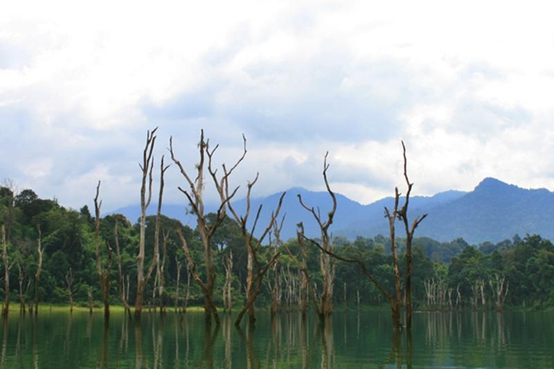 scenery_snakehead_fishing_chiang_mai_18