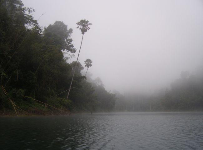 scenery_snakehead_fishing_chiang_mai_23