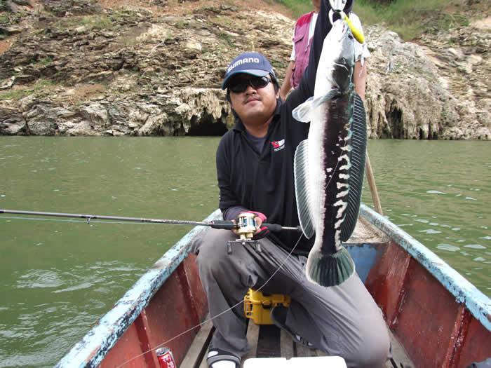 snakehead_fishing_chiang_mai_2