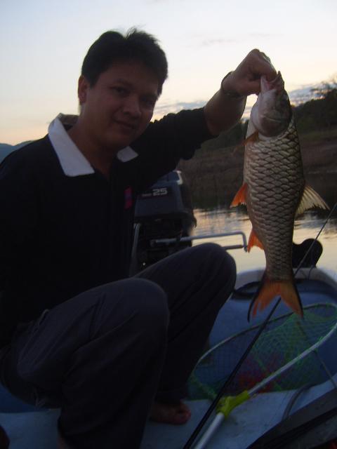 snakehead_fishing_chiang_mai_21
