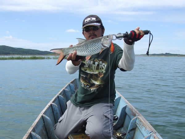 snakehead_fishing_chiang_mai_40