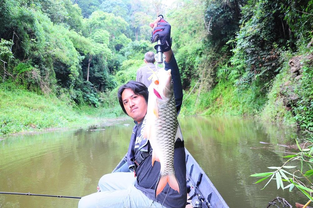 snakehead_fishing_chiang_mai_45