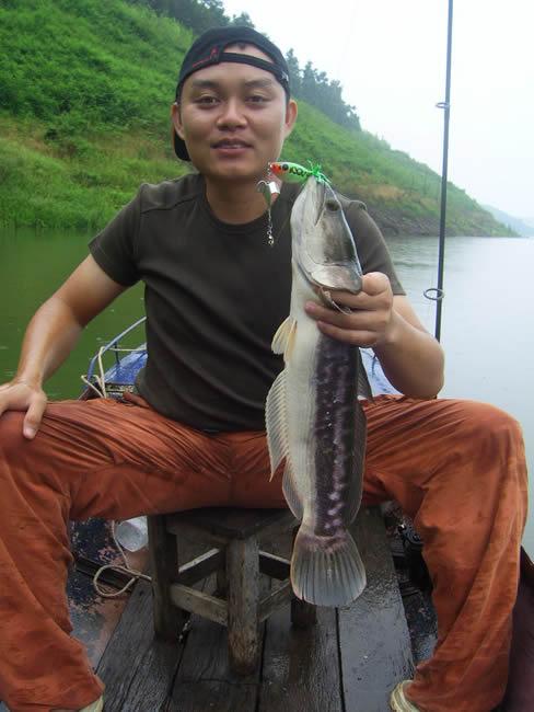 snakehead_fishing_chiang_mai_7_28