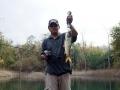 snakehead_fishing_chiang_mai_13