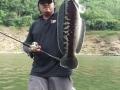 snakehead_fishing_chiang_mai_4