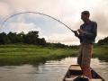 snakehead_fishing_chiang_mai_55