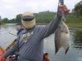 snakehead_fishing_ninja