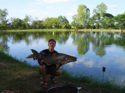 Giant_catfish_Fishing_Chiang_mai_Thailand_normal_picture-0036