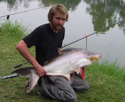 Giant_catfish_Fishing_Chiang_mai_Thailand_normal_picture-0046