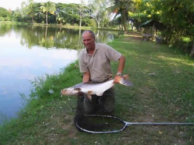 Giant_catfish_Fishing_Chiang_mai_Thailand_normal_picture-0052