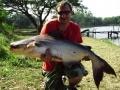 Giant_catfish_Fishing_Chiang_mai_Thailand_0.408