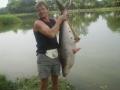 Giant_catfish_Fishing_Chiang_mai_Thailand_0.447