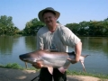 Giant_catfish_Fishing_Chiang_mai_Thailand_normal_picture-00090