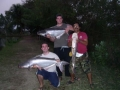 Giant_catfish_Fishing_Chiang_mai_Thailand_normal_picture-00130