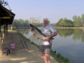 Giant_catfish_Fishing_Chiang_mai_Thailand_normal_picture-0016
