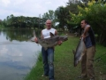 Giant_catfish_Fishing_Chiang_mai_Thailand_normal_picture-0033