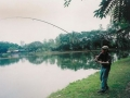 Giant_catfish_Fishing_Chiang_mai_Thailand_normal_picture-0094