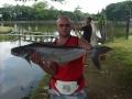 Giant_catfish_Fishing_Chiang_mai_Thailand_s5000127