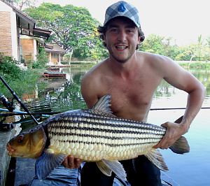 Picture of Julliens Golden Price carp (Probarbus Jullieni) Isok barb caught fishing in Thailand at Dreamlake fishing resort in Chiang mai