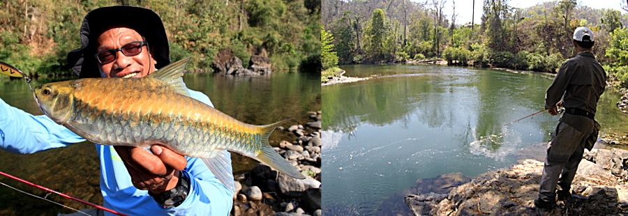 Amazing fly fishing in Thailand