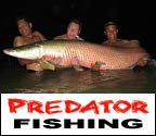 Mega Fishing Thailand guided fishing trips in Bangkok Predator fishing package title image graphic