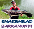 Barramundi and snakehead fishing bangkok link