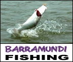 Mega Fishing Thailand guided fishing trips in Bangkok barramundi and Giant snakehead fishing package title image graphic