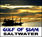 Click here for info on Sea Fishing in Thailand