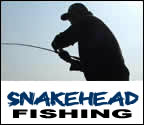 Mega Fishing Thailand guided fishing trips in Chiang mai for Giant snakehead package title image graphic