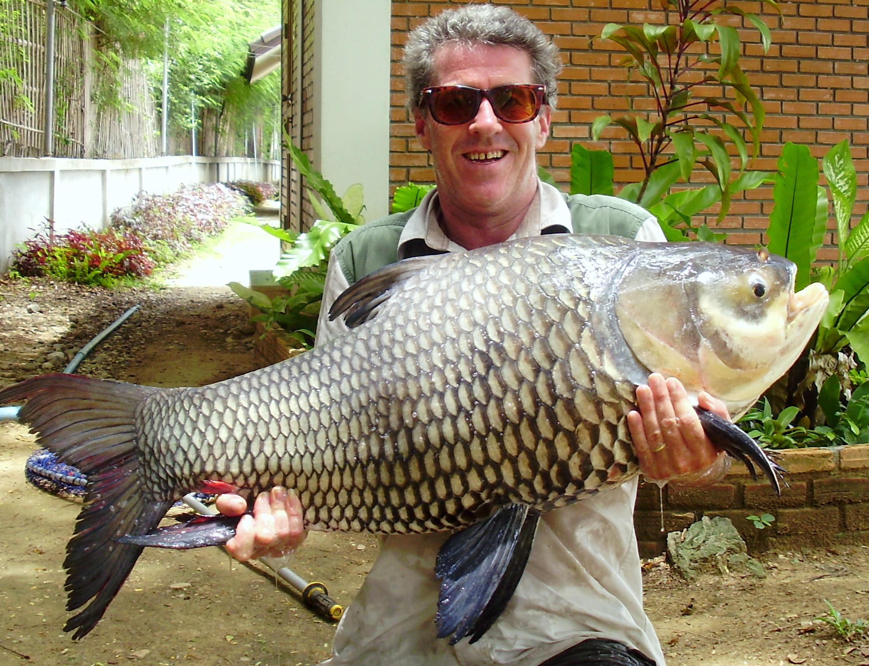 Dream lake chiang mai fishing resort megafishingthailand for Mai mai fish