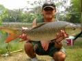Dreamlake_Fishing_Thailand_rohu_fishing_thailand