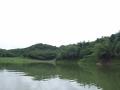 scenery_snakehead_fishing_chiang_mai_3