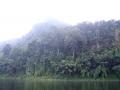 scenery_snakehead_fishing_chiang_mai_5