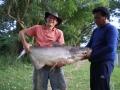 Giant_catfish_Fishing_Chiang_mai_Thailand_0.347