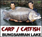 mega_fishing_thailand_giant_siamese_carp_fishing_trip