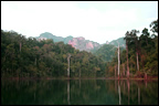 photo of snakehead fishing scenery southern Thailand